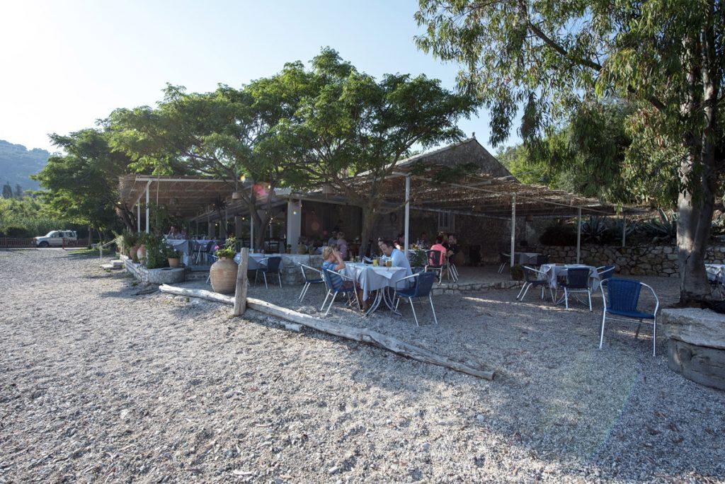 Eucalyptus Taverna Outdoor Dinning